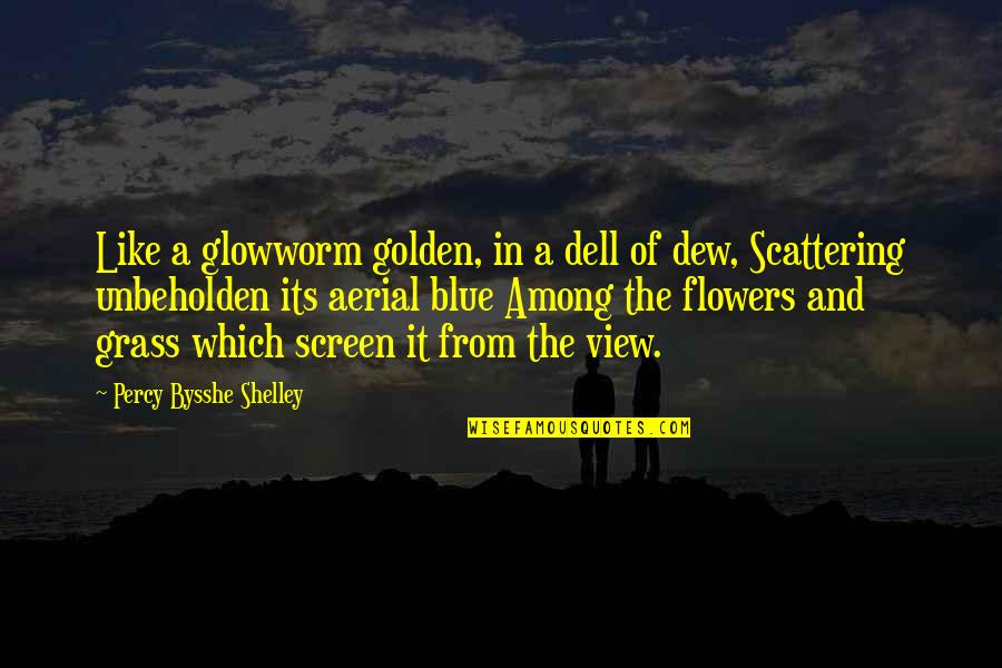 Glowworm's Quotes By Percy Bysshe Shelley: Like a glowworm golden, in a dell of