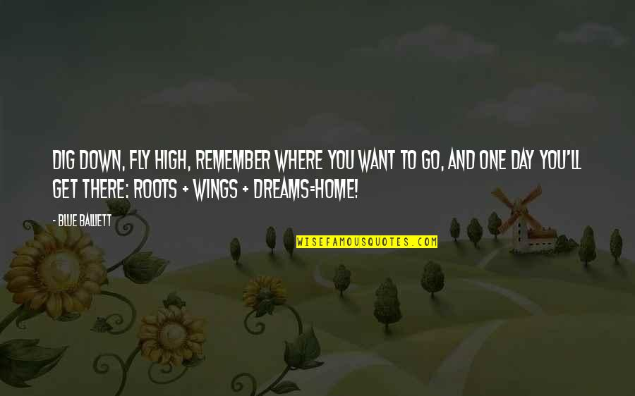 Go Blue Quotes By Blue Balliett: Dig down, fly high, remember where you want