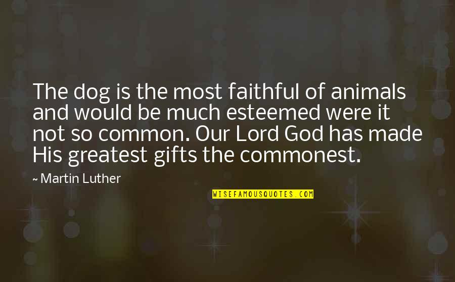 God And Gifts Quotes By Martin Luther: The dog is the most faithful of animals