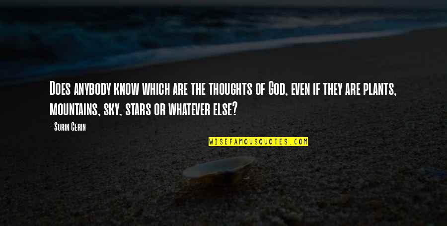 God And Mountains Quotes By Sorin Cerin: Does anybody know which are the thoughts of