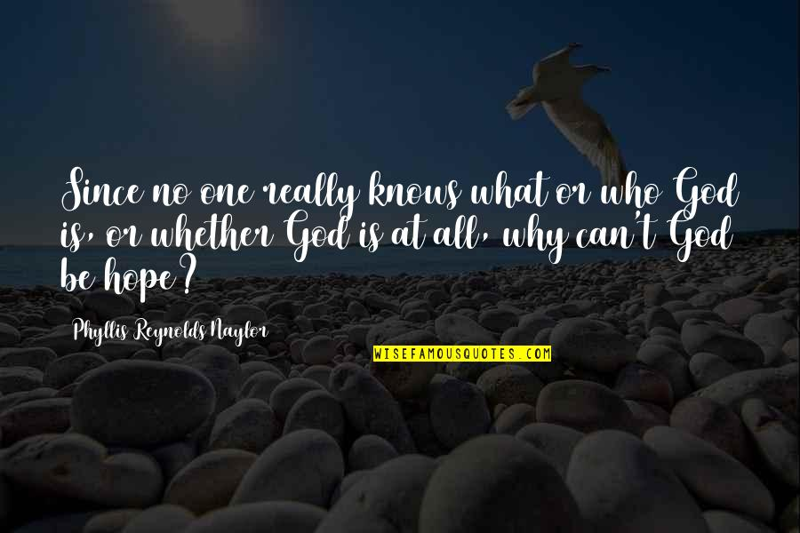 God Knows All Quotes By Phyllis Reynolds Naylor: Since no one really knows what or who
