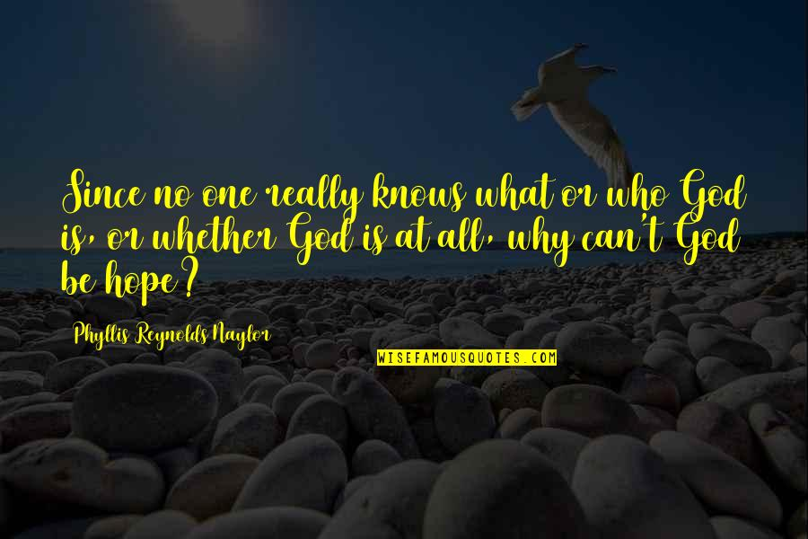 God Knows Quotes By Phyllis Reynolds Naylor: Since no one really knows what or who