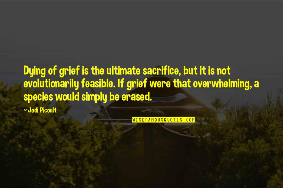 Godfather 3 Movie Quotes By Jodi Picoult: Dying of grief is the ultimate sacrifice, but