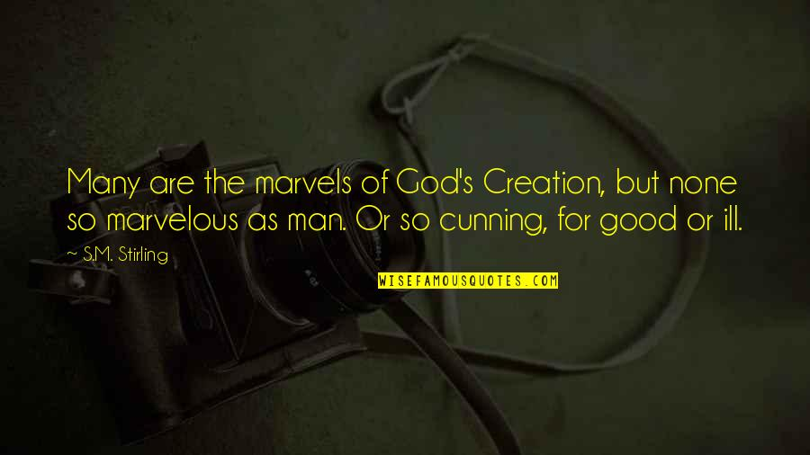 God's Creation Quotes By S.M. Stirling: Many are the marvels of God's Creation, but