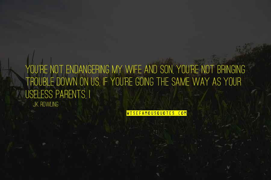 Going My Way Quotes By J.K. Rowling: You're not endangering my wife and son, you're