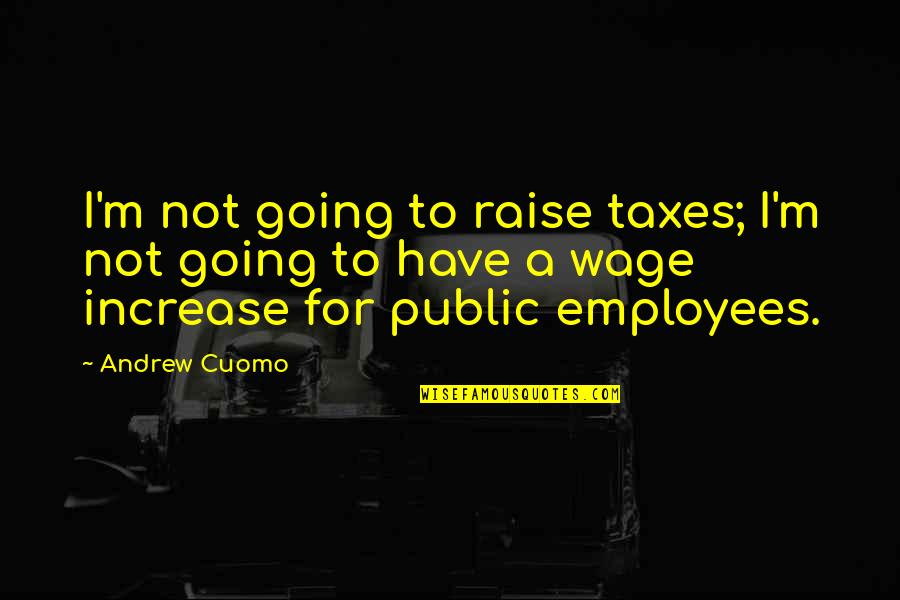 Going Public Quotes By Andrew Cuomo: I'm not going to raise taxes; I'm not