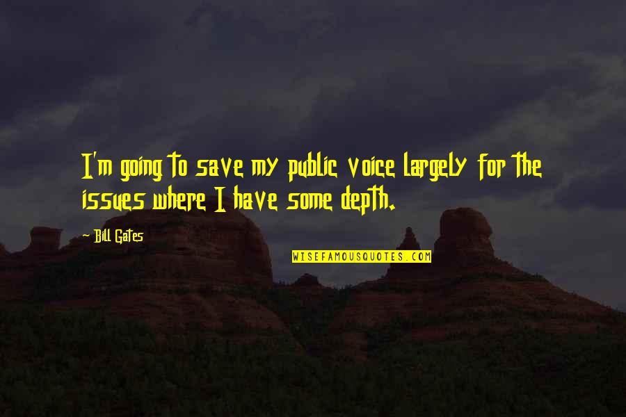 Going Public Quotes By Bill Gates: I'm going to save my public voice largely