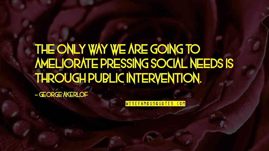 Going Public Quotes By George Akerlof: The only way we are going to ameliorate