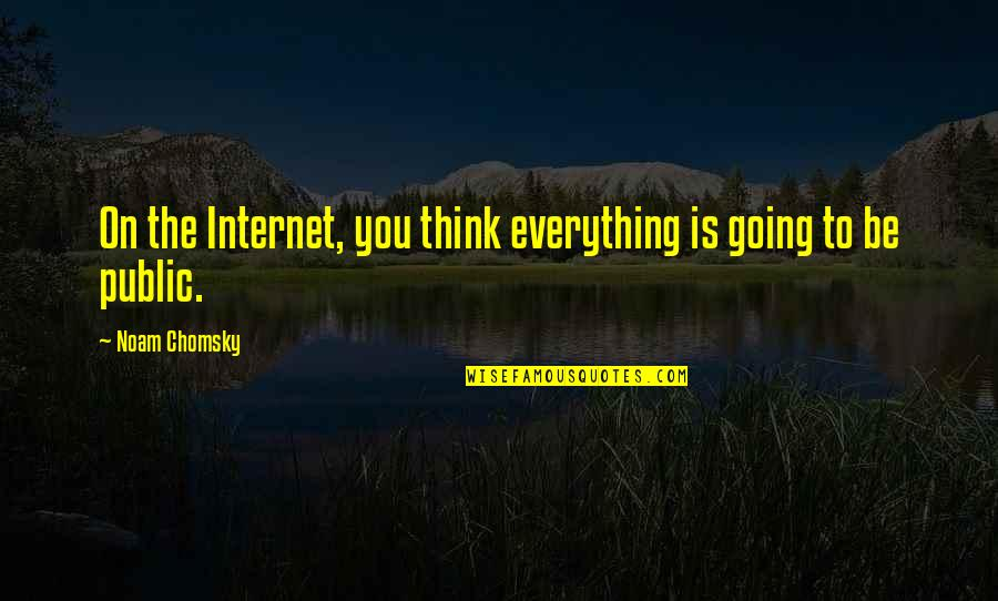 Going Public Quotes By Noam Chomsky: On the Internet, you think everything is going