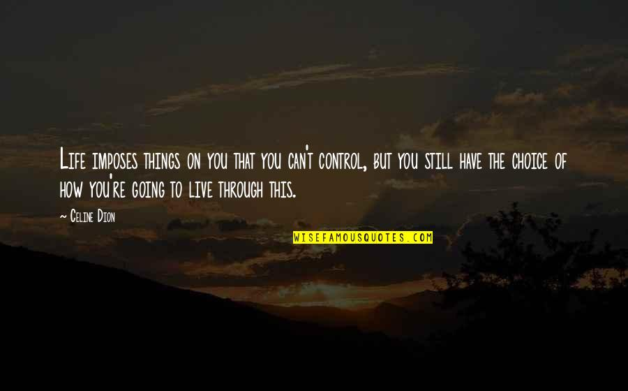 Going Through Life Quotes By Celine Dion: Life imposes things on you that you can't