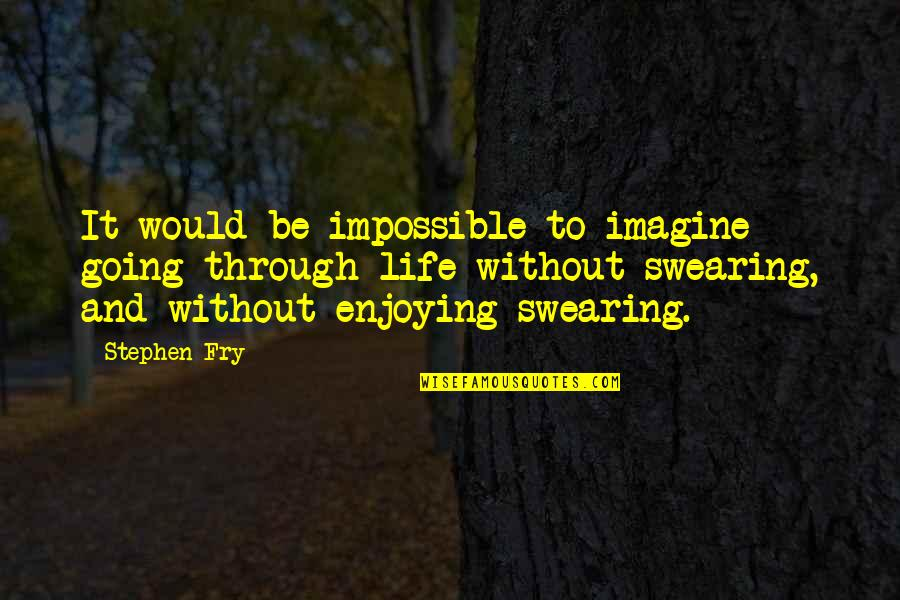 Going Through Life Quotes By Stephen Fry: It would be impossible to imagine going through