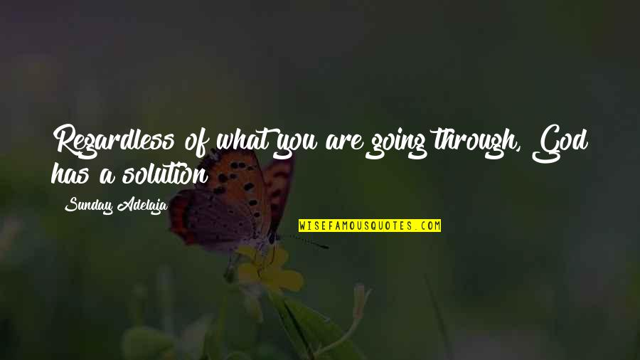 Going Through Life Quotes By Sunday Adelaja: Regardless of what you are going through, God