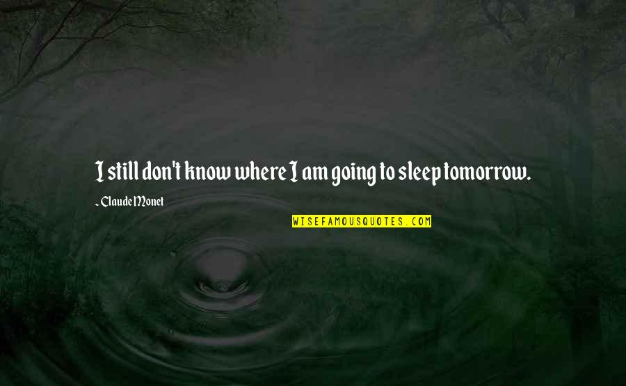 Going To Sleep Quotes By Claude Monet: I still don't know where I am going