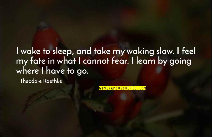 Going To Sleep Quotes By Theodore Roethke: I wake to sleep, and take my waking