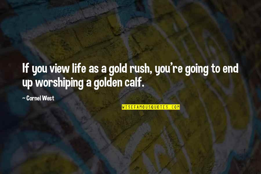 Gold Rush Quotes By Cornel West: If you view life as a gold rush,