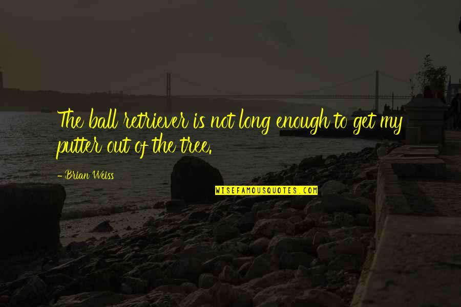 Golf Ball Quotes By Brian Weiss: The ball retriever is not long enough to