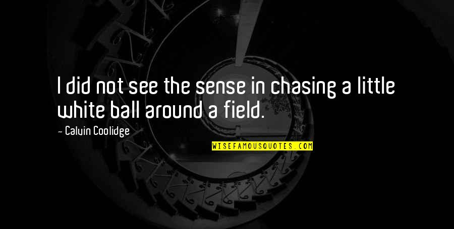 Golf Ball Quotes By Calvin Coolidge: I did not see the sense in chasing