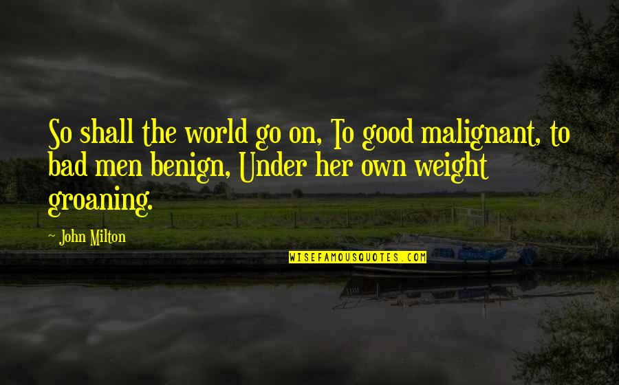 Good And Bad In The World Quotes By John Milton: So shall the world go on, To good