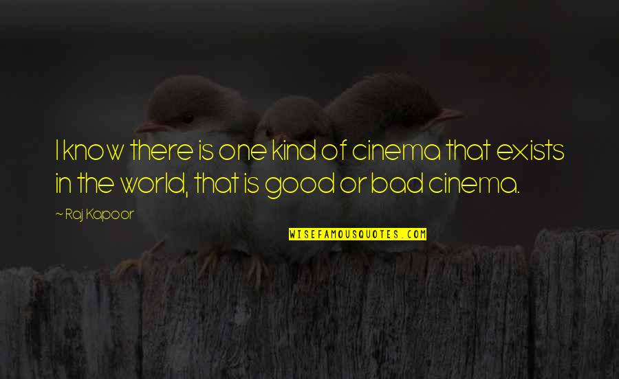 Good And Bad In The World Quotes By Raj Kapoor: I know there is one kind of cinema