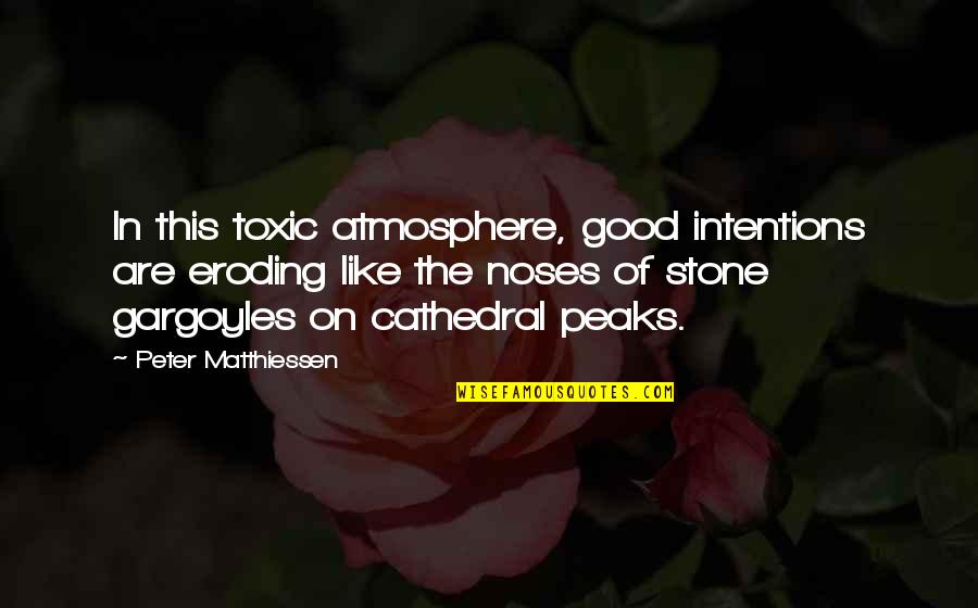 Good Atmosphere Quotes By Peter Matthiessen: In this toxic atmosphere, good intentions are eroding