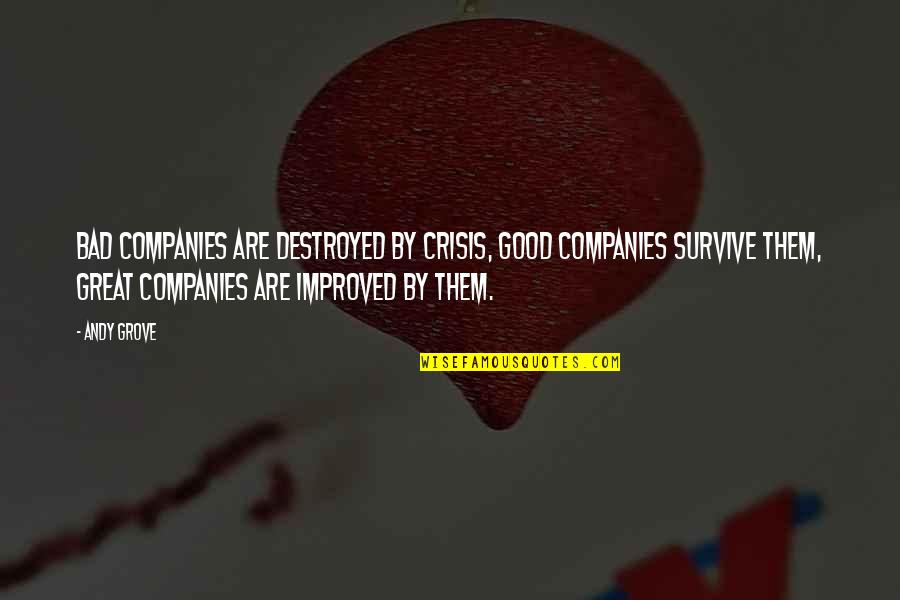 Good Company Quotes By Andy Grove: Bad companies are destroyed by crisis, Good companies
