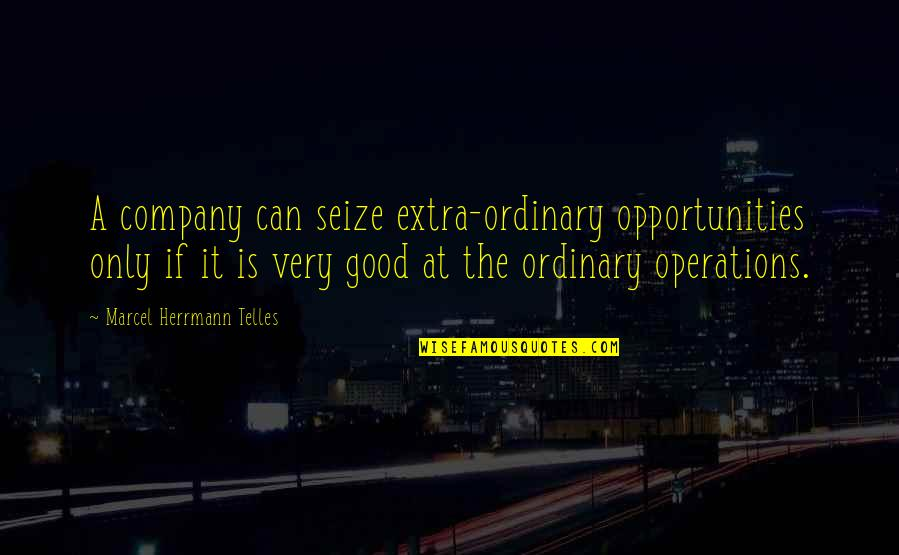 Good Company Quotes By Marcel Herrmann Telles: A company can seize extra-ordinary opportunities only if