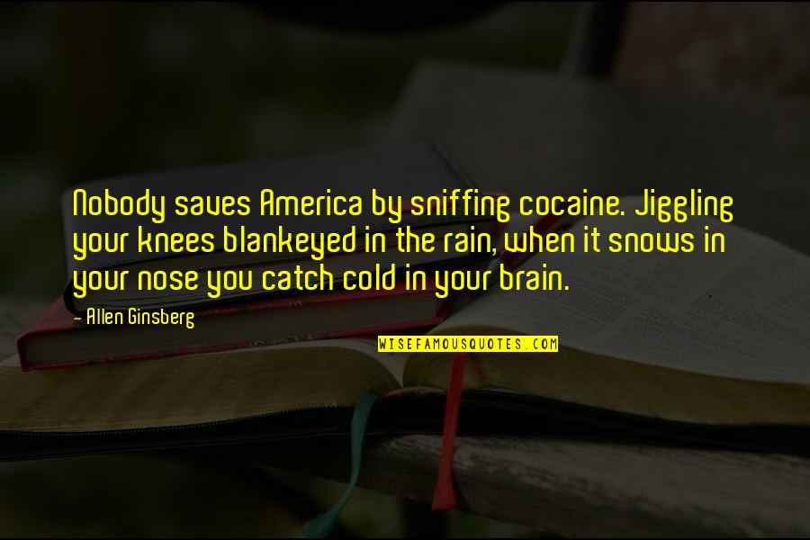 Good Demi Quotes By Allen Ginsberg: Nobody saves America by sniffing cocaine. Jiggling your