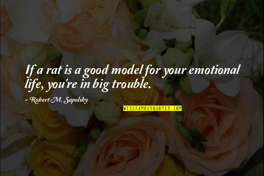 Good Emotional Life Quotes By Robert M. Sapolsky: If a rat is a good model for