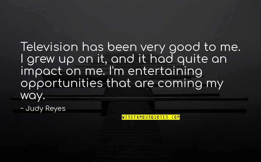 Good Entertaining Quotes By Judy Reyes: Television has been very good to me. I