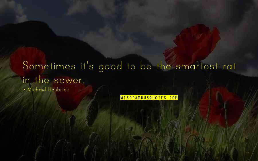 Good Funny Quotes By Michael Houbrick: Sometimes it's good to be the smartest rat