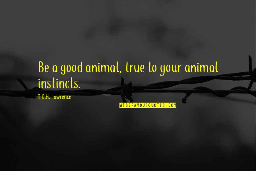 Good Instincts Quotes By D.H. Lawrence: Be a good animal, true to your animal