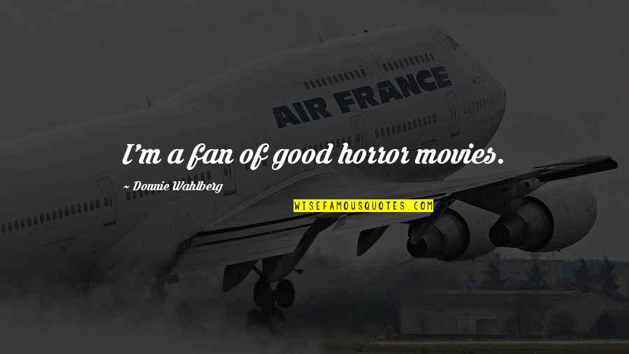 Good Movies Quotes By Donnie Wahlberg: I'm a fan of good horror movies.