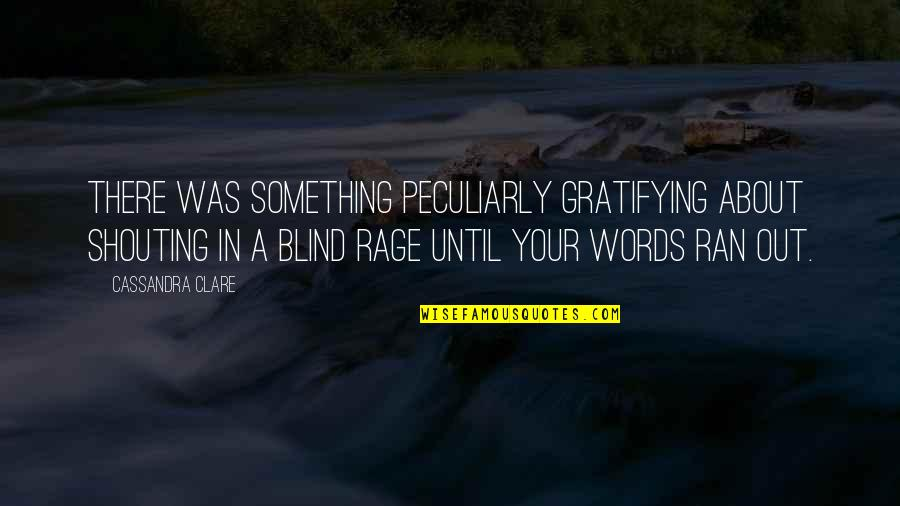 Good Promotion Quotes By Cassandra Clare: There was something peculiarly gratifying about shouting in