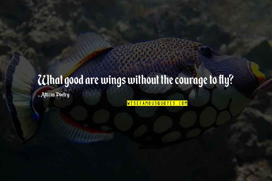 Good Quotes Quotes By Atticus Poetry: What good are wings without the courage to