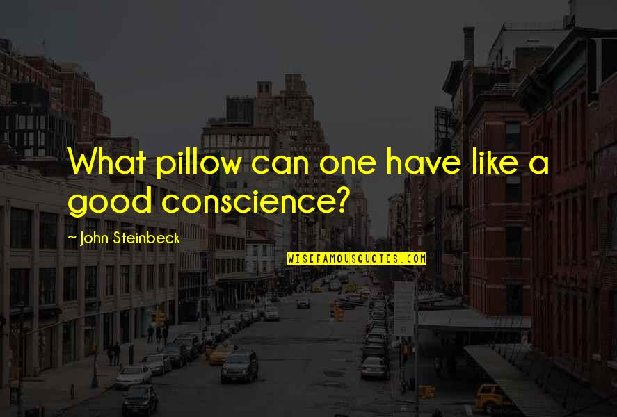 Good Sleep Quotes By John Steinbeck: What pillow can one have like a good