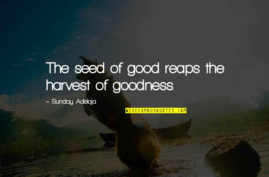 Good Sunday Quotes By Sunday Adelaja: The seed of good reaps the harvest of