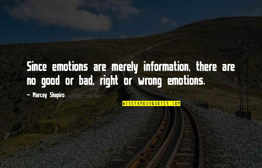 Good Well Being Quotes By Marcey Shapiro: Since emotions are merely information, there are no