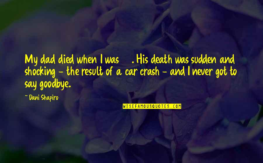 Goodbye And Death Quotes By Dani Shapiro: My dad died when I was 23. His