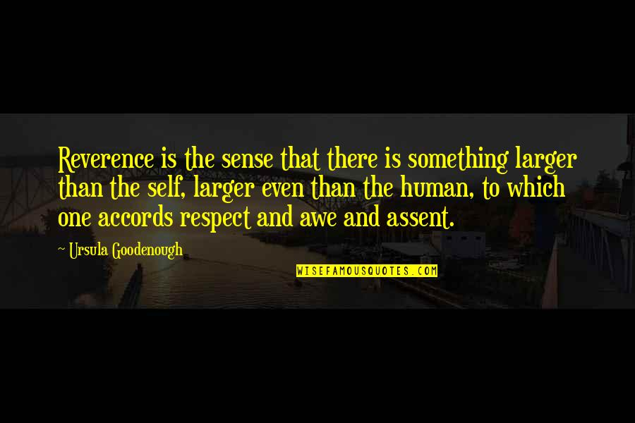 Goodenough Quotes By Ursula Goodenough: Reverence is the sense that there is something
