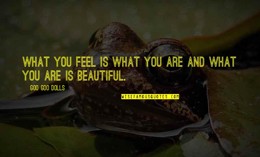 Goo's Quotes By Goo Goo Dolls: What you feel is what you are and