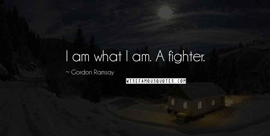 Gordon Ramsay quotes: I am what I am. A fighter.