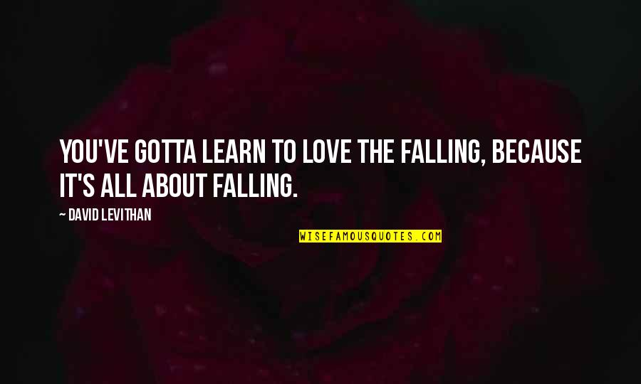 Gotta Love Life Quotes By David Levithan: You've gotta learn to love the falling, because