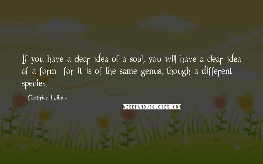 Gottfried Leibniz quotes: If you have a clear idea of a soul, you will have a clear idea of a form; for it is of the same genus, though a different species.