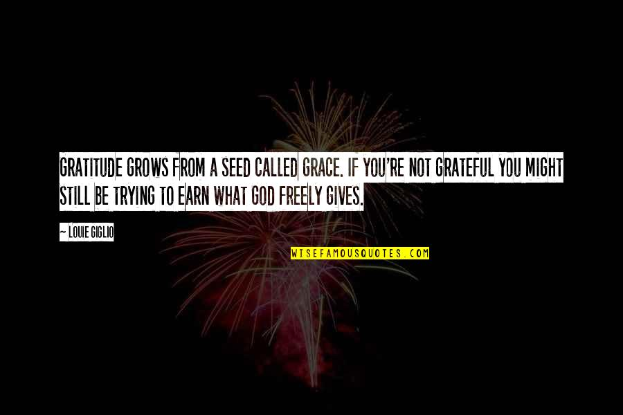 Grace From God Quotes By Louie Giglio: Gratitude grows from a seed called grace. If
