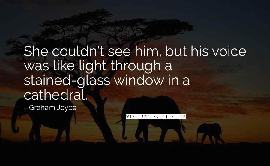 Graham Joyce quotes: She couldn't see him, but his voice was like light through a stained-glass window in a cathedral.