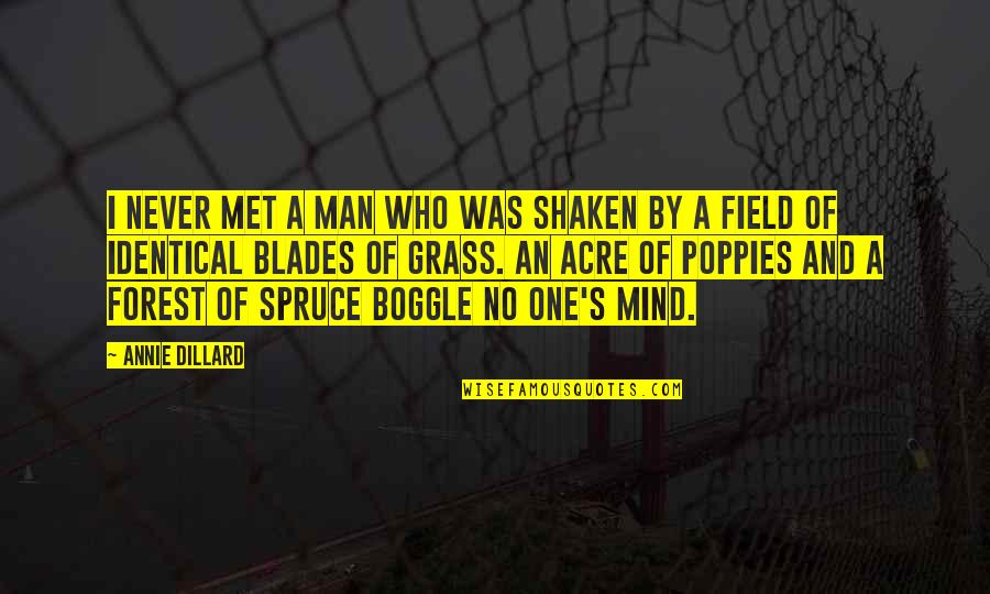 Grass's Quotes By Annie Dillard: I never met a man who was shaken