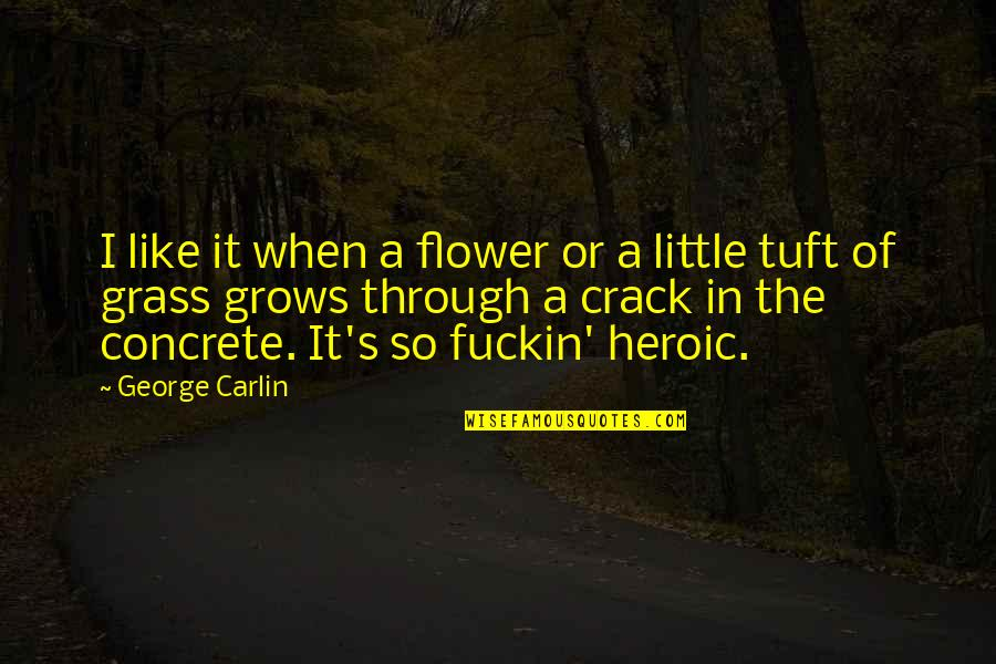 Grass's Quotes By George Carlin: I like it when a flower or a