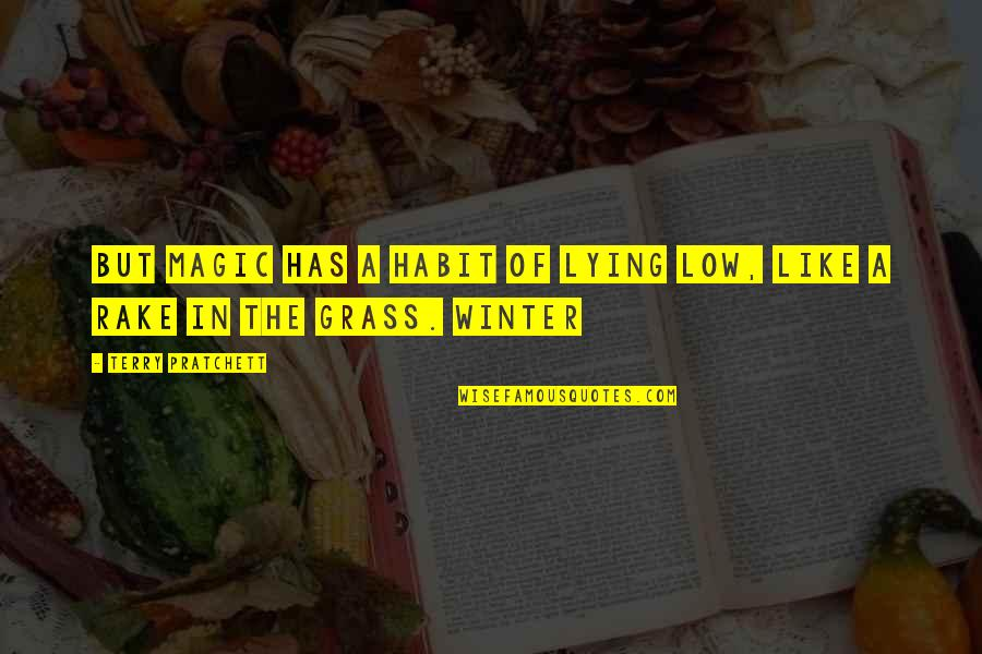 Grass's Quotes By Terry Pratchett: But magic has a habit of lying low,