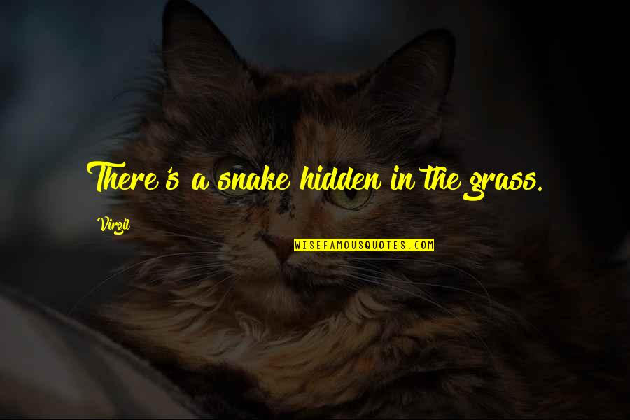 Grass's Quotes By Virgil: There's a snake hidden in the grass.