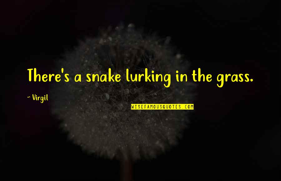 Grass's Quotes By Virgil: There's a snake lurking in the grass.
